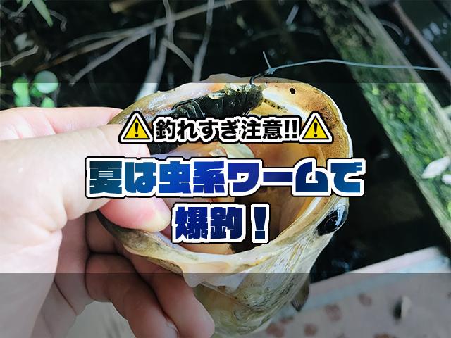 【釣れすぎ注意】数釣りからサイズ狙いまで…夏に爆釣の虫系ワームを一挙公開!