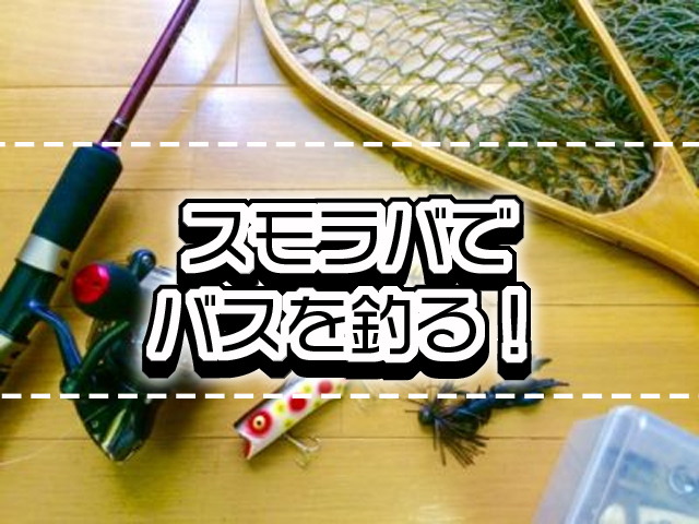 スモラバが有効なシチュエーションや釣れるアクションを解説