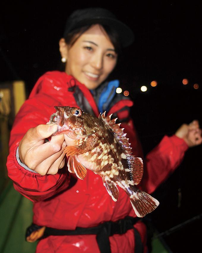 アタリ頻発!圧巻の釣れっぷり!東京湾の夜カサゴ!