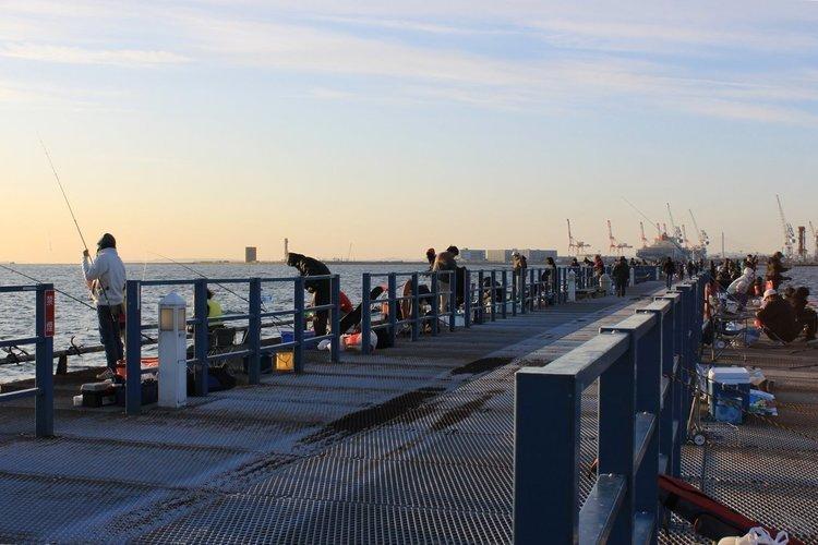 本牧海づり施設は釣り人に人気な横浜のつり施設!気になる本牧海づり施設で釣れる魚や釣り方、営業情報をまとめてご紹介!