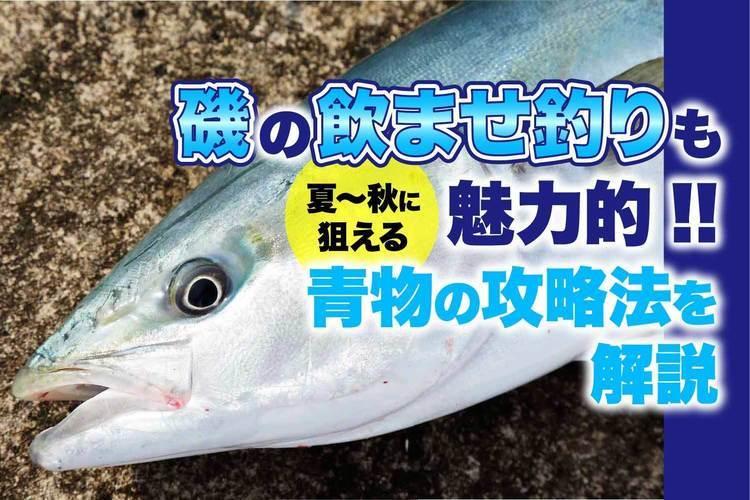 磯の飲ませ釣りも魅力的!! 夏〜秋に狙える青物の攻略法を解説