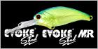 EVOKE SHAD(イヴォークシャッド)