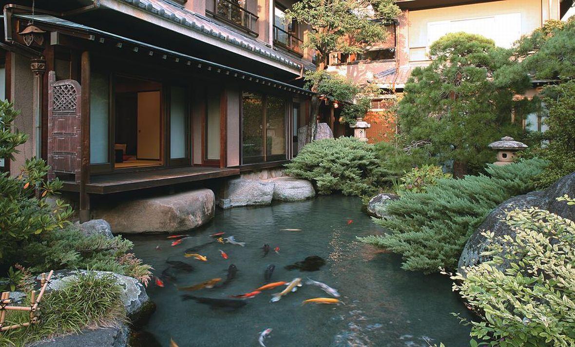 当館の1階の全てのお部屋から、池に泳ぐ鯉に餌をあげることができます。