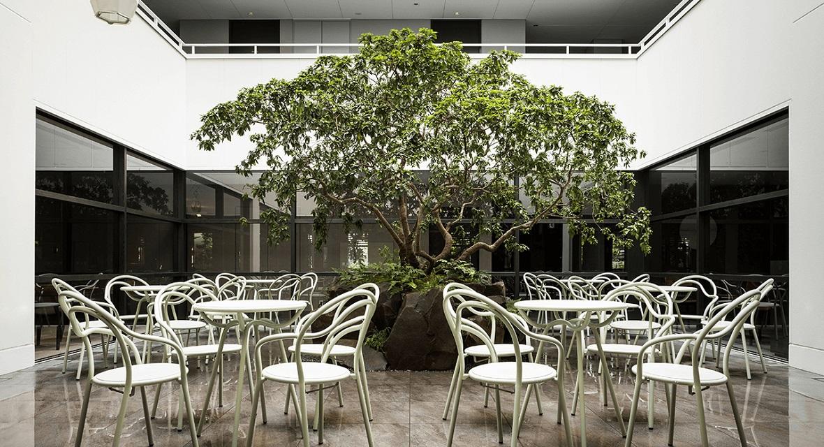 【テラス】中庭に配置された植栽が印象的な中庭のテラス。ホテルの建物内でも外気を感じられる開放的なテラス。