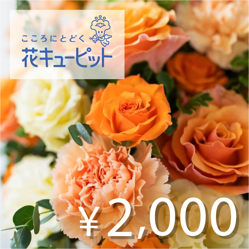 全国共通 花とみどりのeチケット 2,000円