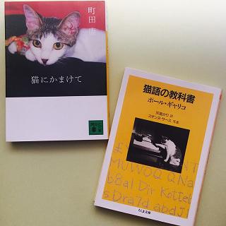 猫が好きだと叫びたい!読む&見る、にゃんこワールド7選