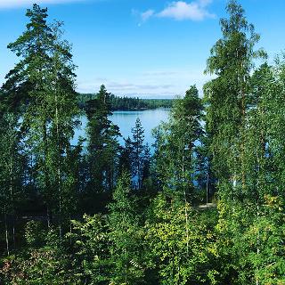 森と湖の国フィンランドが育む おいしいピュアフードに出合う旅! 1