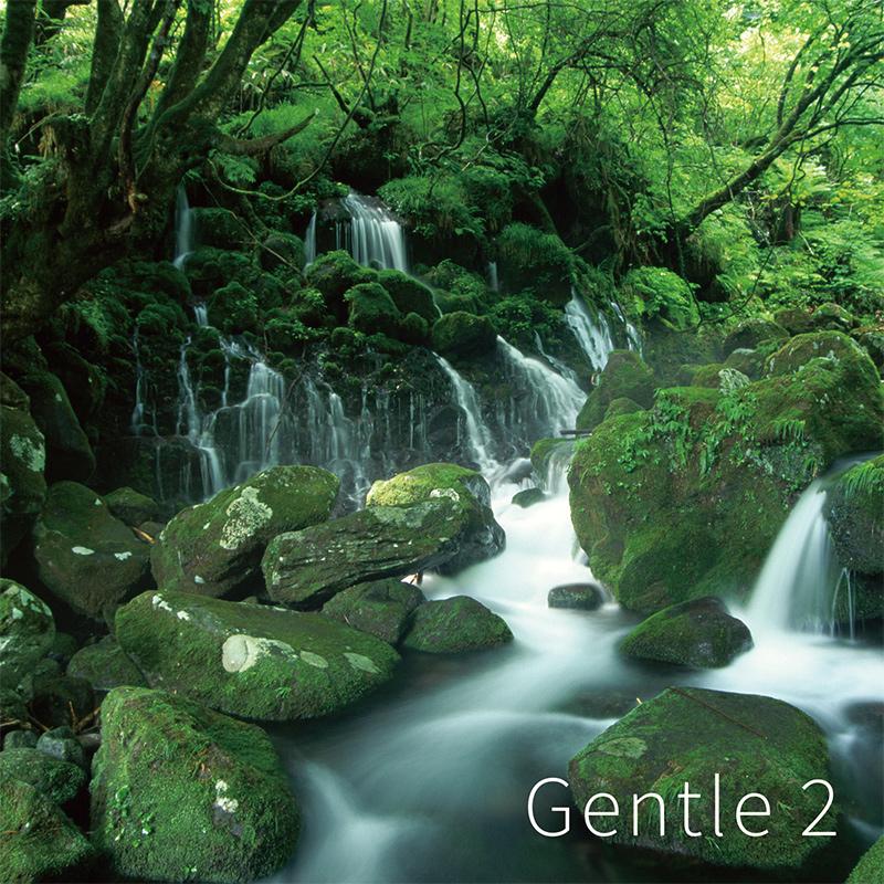 Gentle 2