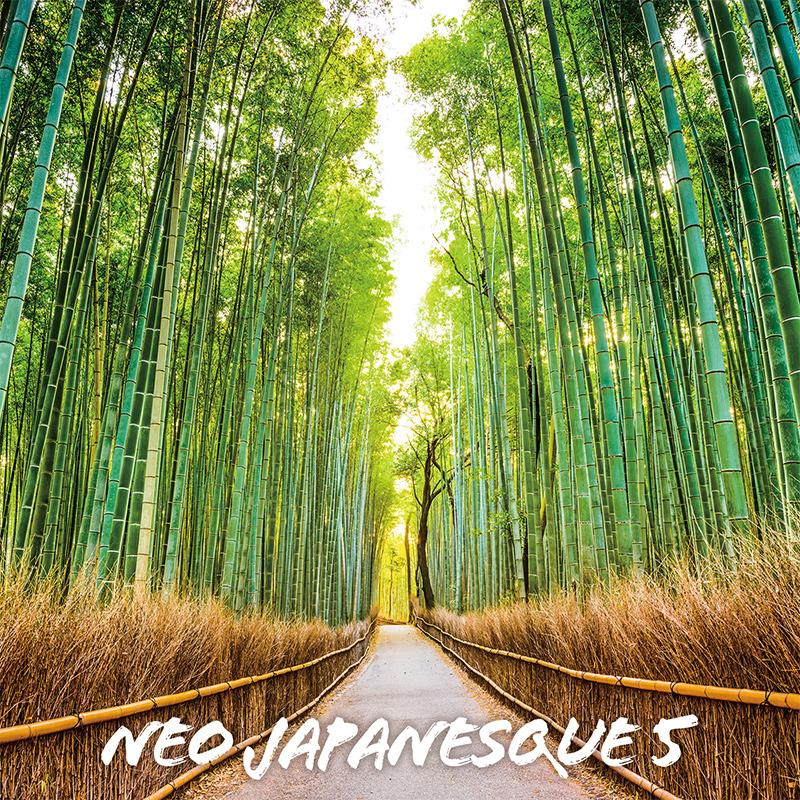 Neo Japanesque 5