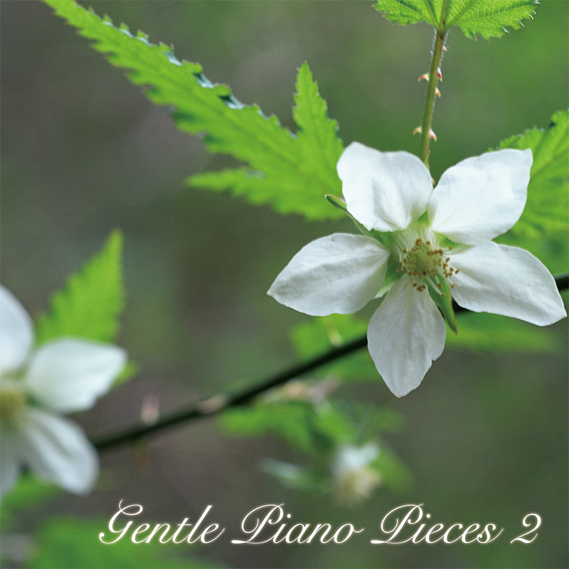 Gentle Piano Pieces 2