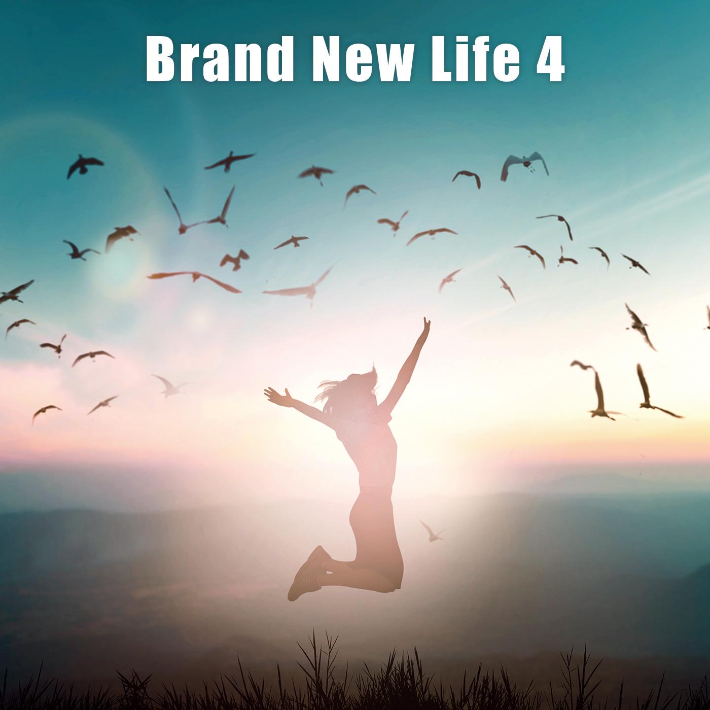 Brand New Life 4