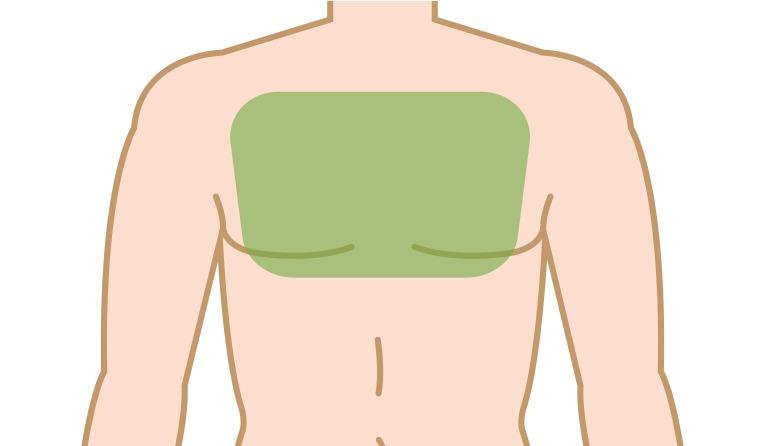 胸毛を永久脱毛する仕組みを紹介