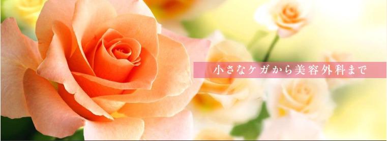 野崎クリニック公式サイト