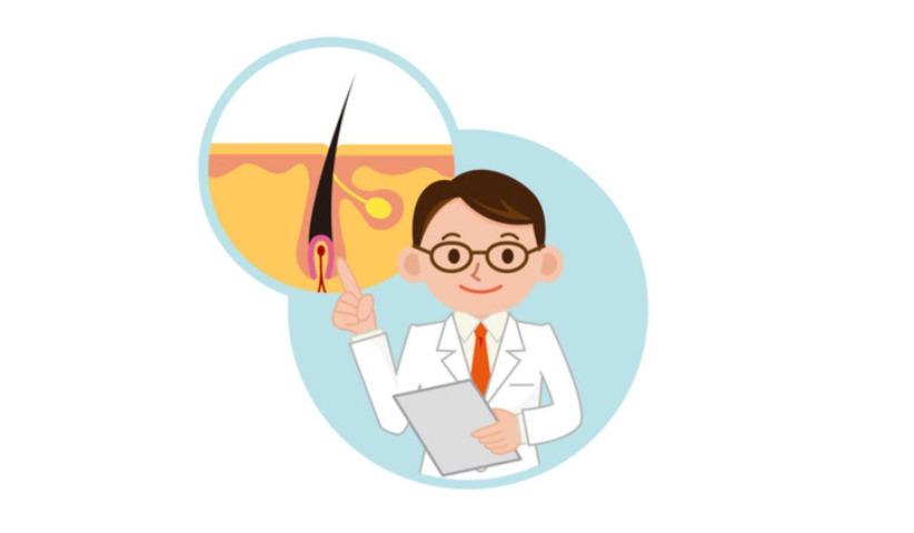 硬毛化・増毛化の原因とメカニズム