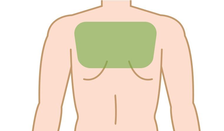 ②背中・肩の頻度・持続期間・周期の目安