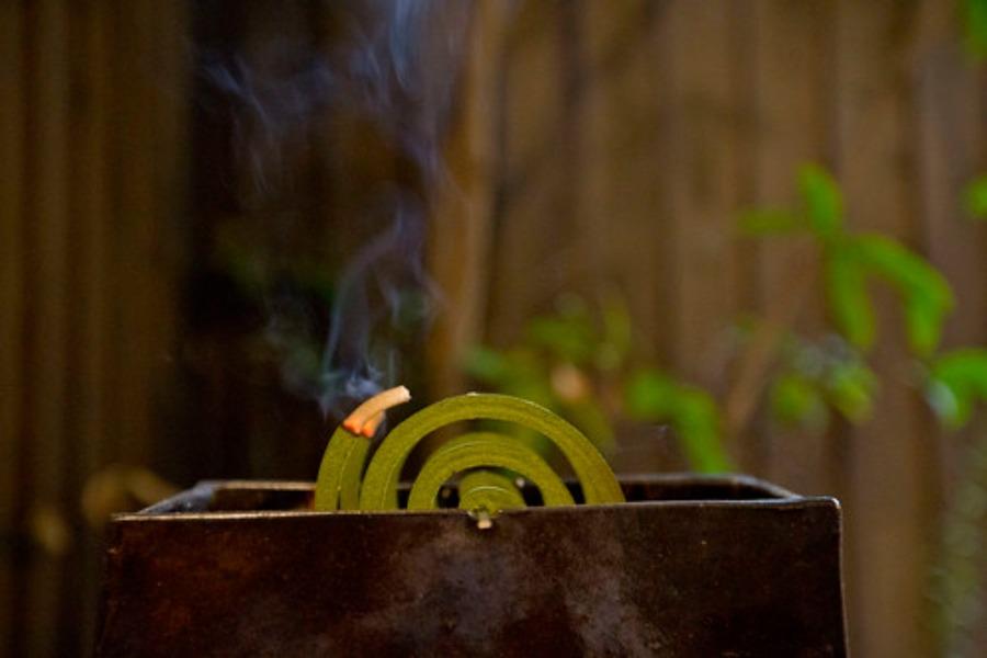 パワー森林香の効果・威力は?専用ケースは100均アイテムでも代用可能?