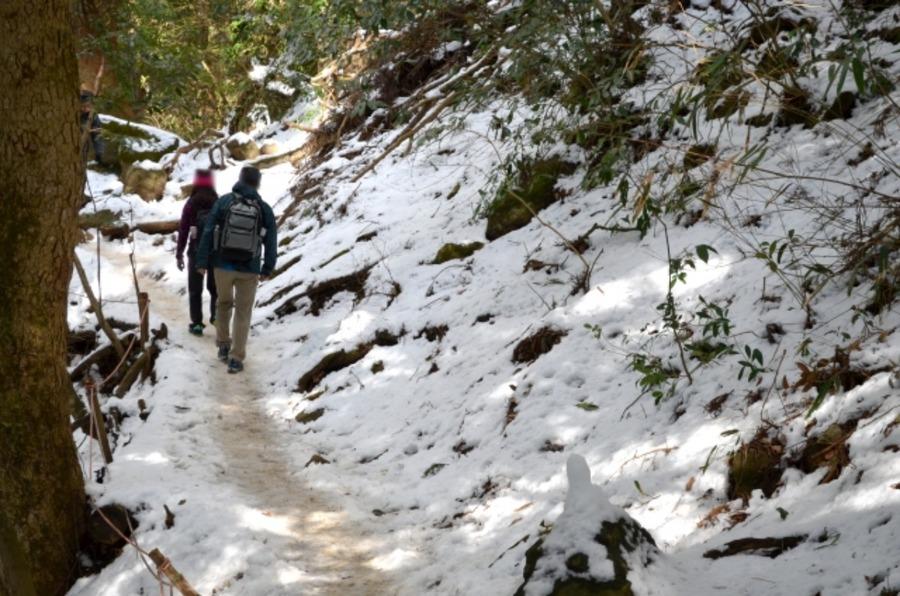 ビーコンは雪山登山の必需品!使い方やおすすめアイテム紹介!