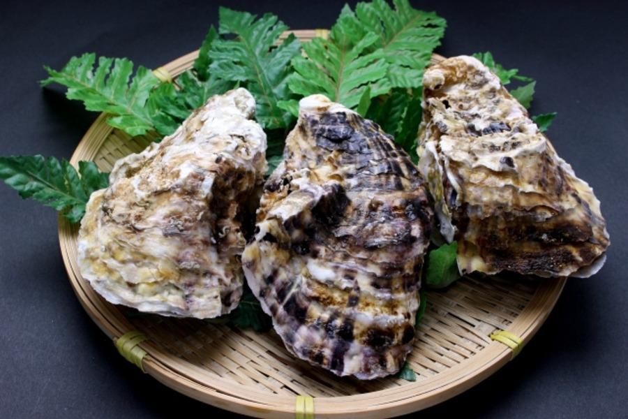 バーベキューで牡蠣を焼くには?注意点や美味しい食べ方を伝授!