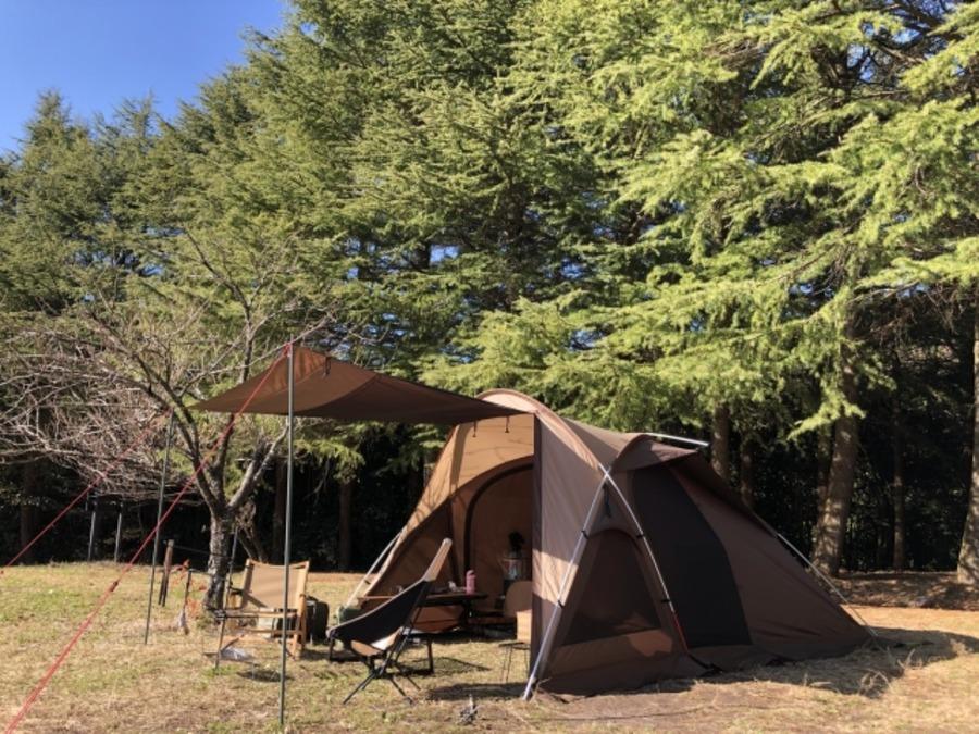 しのつ公園キャンプ場はどんなところ?魅力や基本情報を一挙紹介!