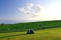 【全国版】高規格キャンプ場おすすめランキングTOP20!
