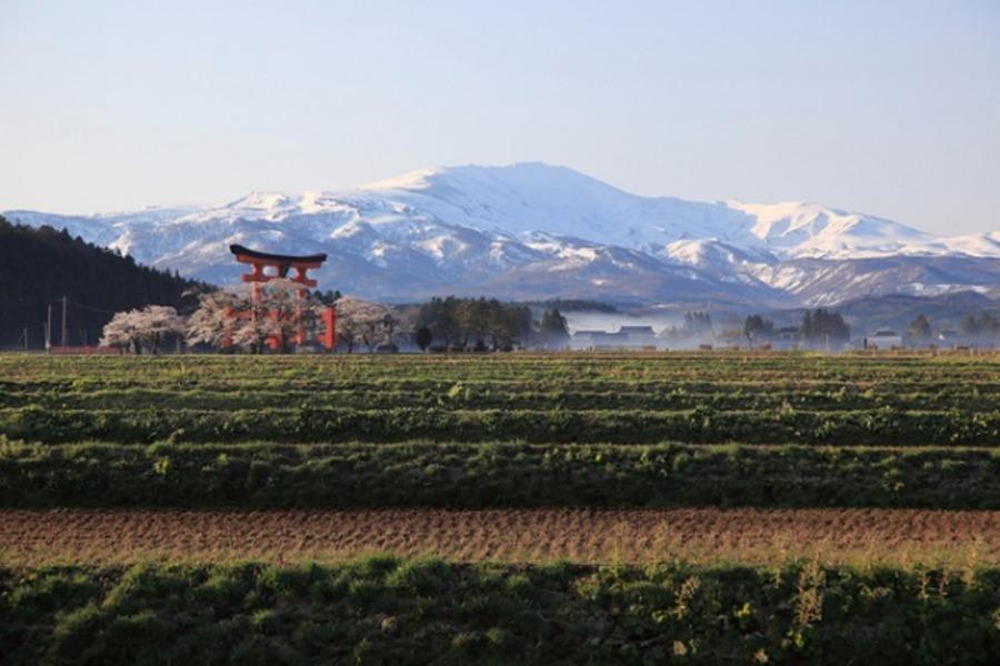 羽黒山の2446の階段がきつい!三山神社までの所要時間は?