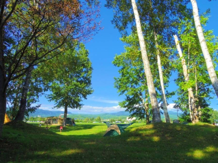 岩尾内湖白樺キャンプ場はテント泊・車中泊無料!予約も不要の人気スポット