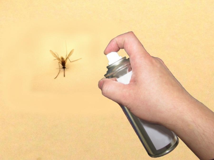 最強の虫除けスプレー11選!蚊やブヨを気にせずキャンプを楽しもう