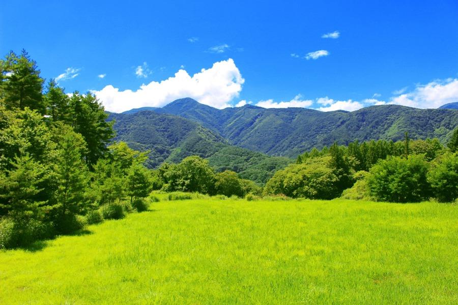 RECAMP勝浦(旧しあわせの丘リゾート)オートキャンプ場の魅力に迫る