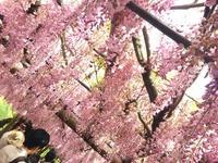 北九州市八幡西区周辺の時計店10選!腕時計の電池交換や修理のおすすめ店まとめ!