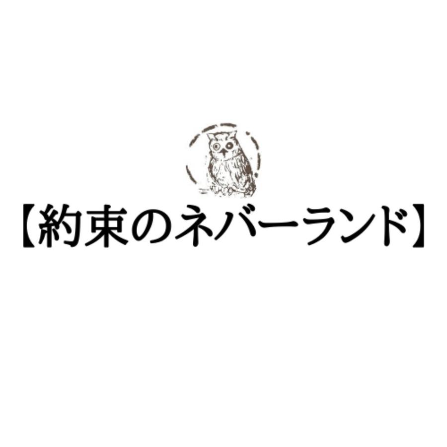 【約束のネバーランド】各キャラの声優一覧!