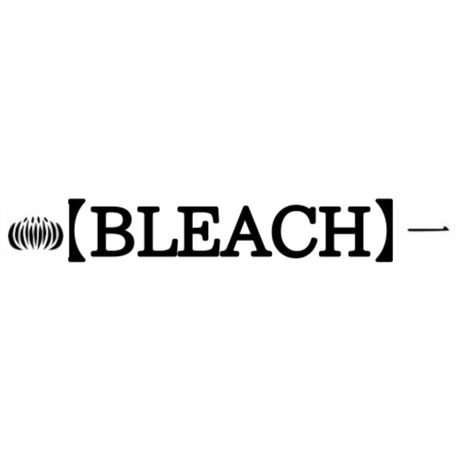 【BLEACH】伊勢七緒の斬魄刀や能力は?京楽春水との関係や過去も調査