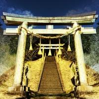 小樽総鎮守の住吉神社はパワースポット!御朱印・お守りやご利益を紹介