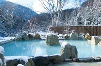 七味温泉・山王荘(長野)は人気の日帰り温泉施設!見どころ・料金も紹介