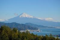 静岡で雨でも楽しめるデートや観光におすすめの遊べるスポットを紹介