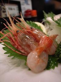 富山・白えび料理のおすすめ店!白えび亭など人気店・駅周辺の食事処を紹介