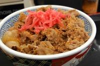 すき家・吉野家の牛丼持ち帰りをレンジで温めよう!美味しくなる方法を紹介