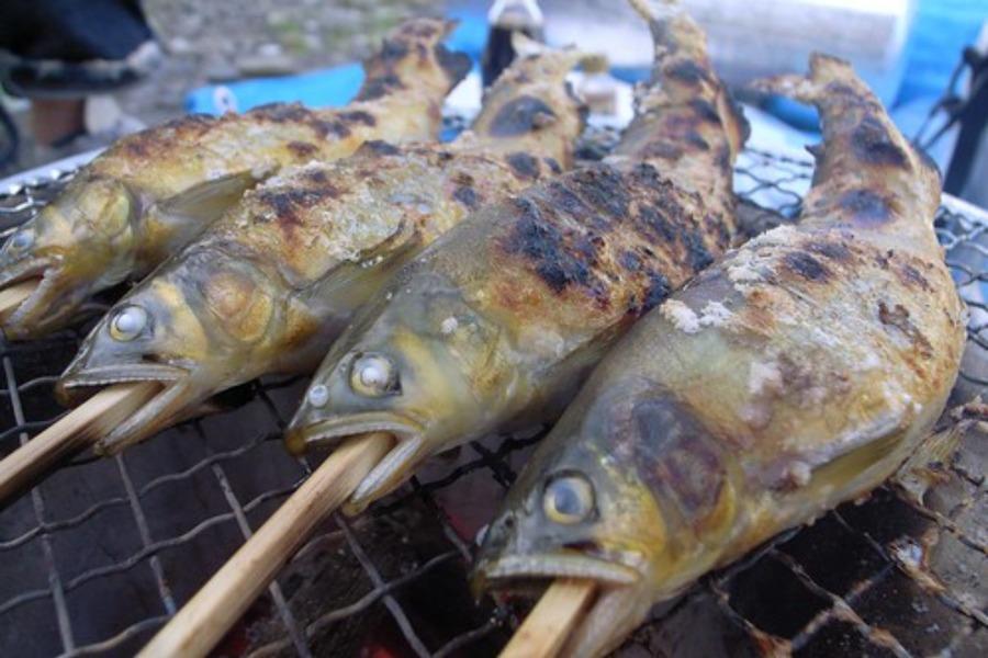 やな川(岐阜)で鮎料理を食べよう!名物グルメのメニューを紹介