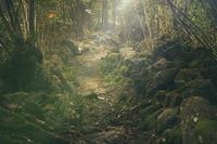 金華山(岐阜)の登山ルートを紹介!ハイキングにおすすめのコースも