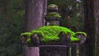 平泉寺白山神社はパワースポット!ご利益や御朱印•苔の見頃も紹介