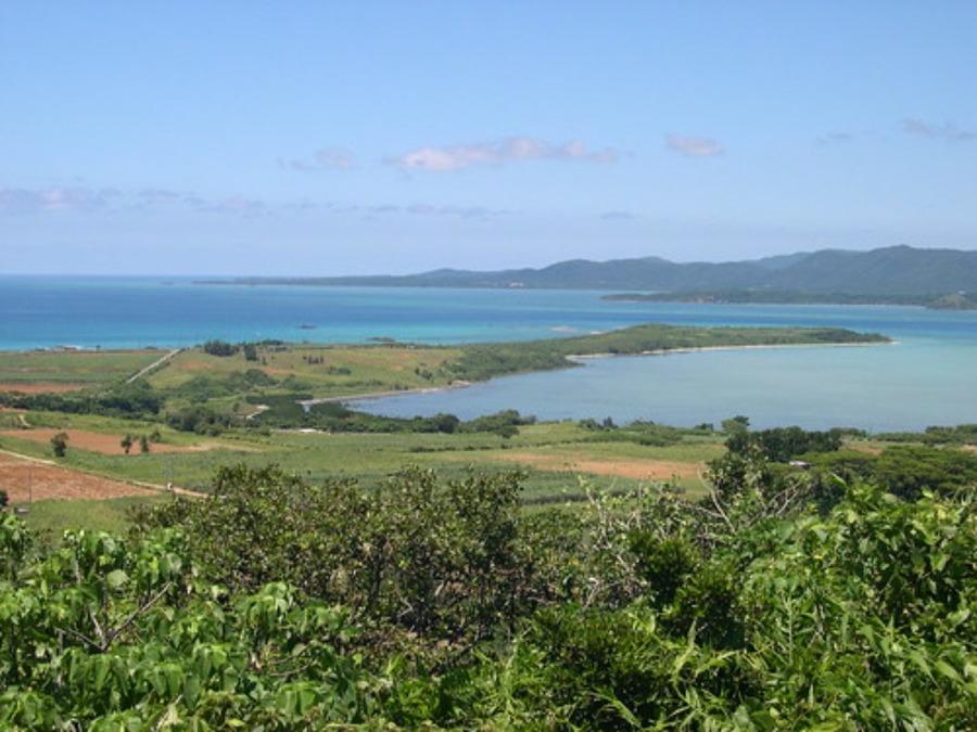 小浜島の観光スポット!名所・港やおすすめの過ごし方を紹介