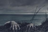 沖縄県の最強心霊スポットランキング!石垣島など幽霊が出る怖い場所も紹介