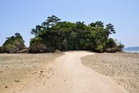 屋我地島のおすすめ観光スポット!カフェ・グルメやビーチを紹介