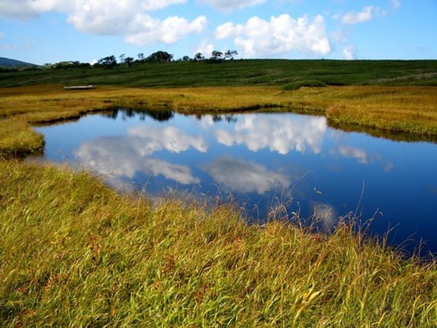底なし沼は日本にも実在する!深さや仕組み・抜け出し方を紹介