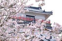 佐賀のパワースポット!縁結びや金運などおすすめの神社も紹介