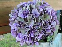 関西の紫陽花(あじさい)名所ランキング!見頃時期・紫陽花祭りも紹介