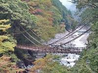 徳島・祖谷のかずら橋は日本三奇橋の1つ!大歩危駅からのアクセス方法を紹介