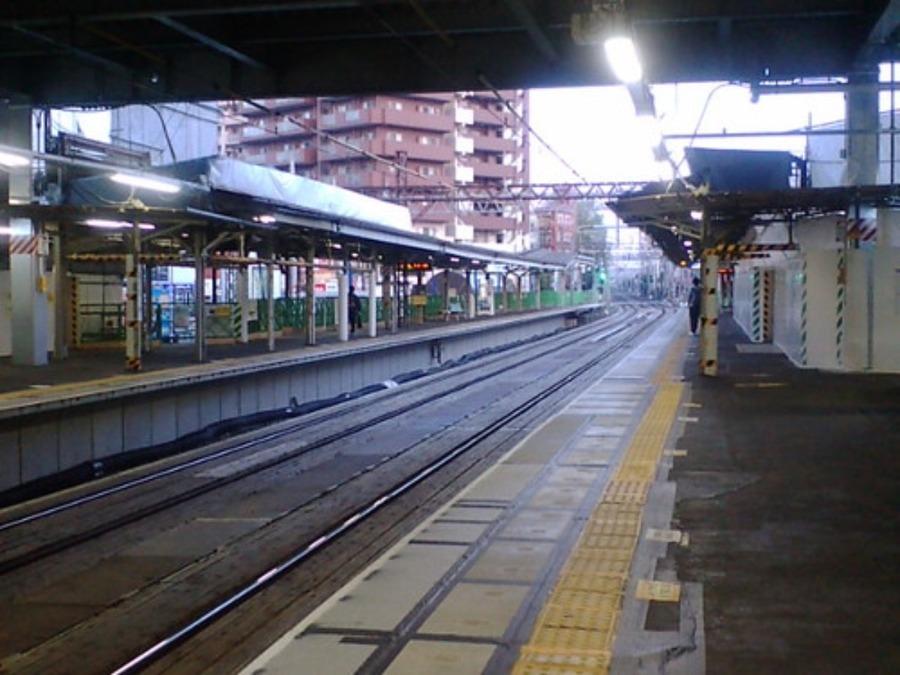 江古田の森公園の心霊現象!中野区最恐と言われる場所の噂を調査