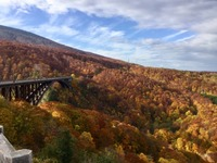 城ヶ倉大橋は渓流を望む絶景スポット!見どころや心霊の噂も紹介