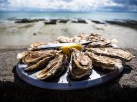 三重県の牡蠣小屋!おすすめの食べ放題のお店や時期・お土産も紹介