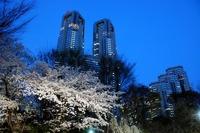 新宿の暇つぶしスポットは?新宿駅など朝・夜に一人で遊べる場所も紹介